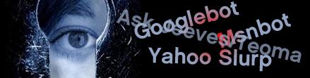 ¿Cómo ven los buscadores nuestras webs?